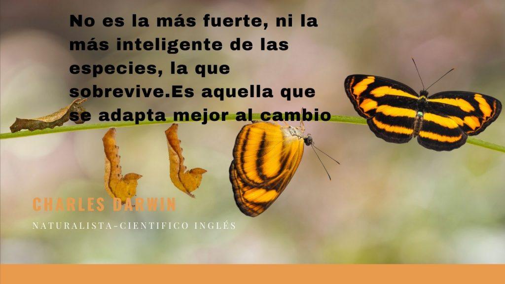 No es la más fuerte, ni la más inteligente de las especies, la que sobrevive.Es aquella que se adapta mejor al cambio